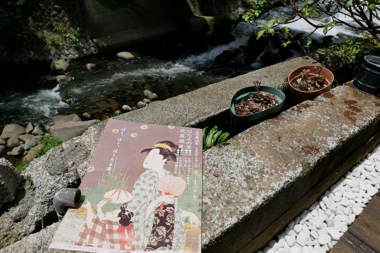 20180601湯河原ほたるの宴・花菖蒲展