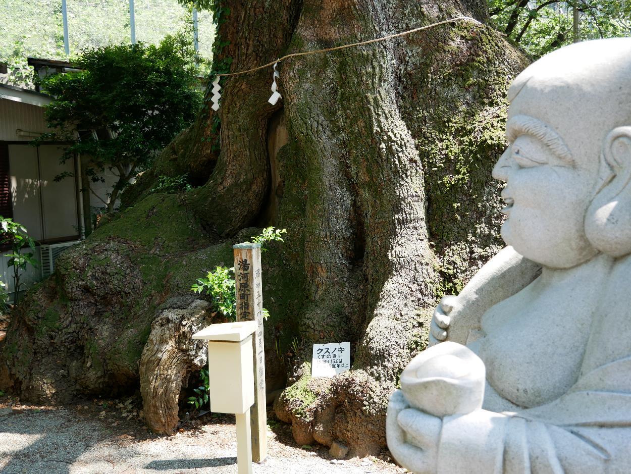湯河原五所神社5